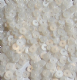 Value Pack 50g 4mm Satin White Flat Round Sequins
